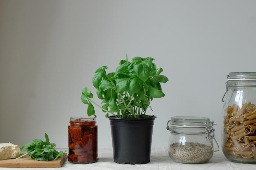 Vegan_Pasta_Salad_Ingredients